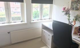 Modern 2 floor family apartment between Utrecht and Amsterdam - Upload photos 12