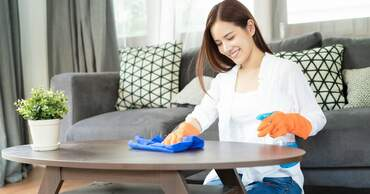 Cleaners & House cleaning services in the Netherlands